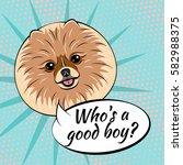 Pomeranian Spitz Dog. Who Is A...
