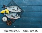 fresh fish  | Shutterstock . vector #583012555