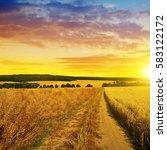 Summer Rural Landscape With...