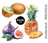 watercolor pineapple  kiwi ... | Shutterstock . vector #583133212