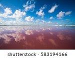 salt pink lagoon in las... | Shutterstock . vector #583194166
