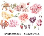watercolor set with orchid... | Shutterstock . vector #583269916
