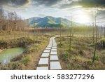 sunset in the woods corridor | Shutterstock . vector #583277296