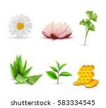 organic cosmetic ingredients... | Shutterstock .eps vector #583334545