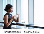 elegant african american woman... | Shutterstock . vector #583425112