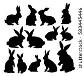 rabbit animal  vector ... | Shutterstock .eps vector #583445446
