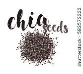 chia seeds. vector image....