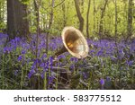 music in the woods  | Shutterstock . vector #583775512
