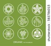 vector set abstract organic...   Shutterstock .eps vector #583786015