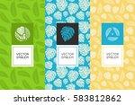 vector set of design elements... | Shutterstock .eps vector #583812862