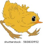 Angry Chicken   Vector...