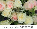 pink and white roses in a...   Shutterstock . vector #583912552