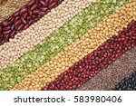 multicolor dired legumes for... | Shutterstock . vector #583980406