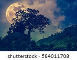 silhouettes of tree with dark...   Shutterstock . vector #584011708
