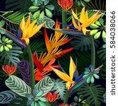 vector seamless pattern  of... | Shutterstock .eps vector #584038066