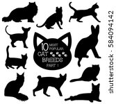 Cat Breeds Set. Cats Icons. Ca...