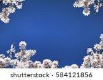 Almond Blossom. Spring...