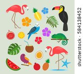 set of tropical  exotic... | Shutterstock .eps vector #584138452
