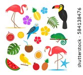 set of tropical  exotic... | Shutterstock .eps vector #584138476