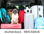 car trunk with cute pug and... | Shutterstock . vector #584156818
