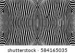 zebra  pattern texture... | Shutterstock .eps vector #584165035