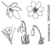 hand drawn spring flowers | Shutterstock .eps vector #584245645