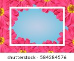spring banner with pink flowers ... | Shutterstock .eps vector #584284576