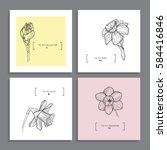 set of vector greeting cards... | Shutterstock .eps vector #584416846