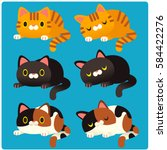 Cute Vector Set Of Different...