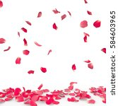 Stock photo rose petals fall to the floor isolated background 584603965