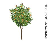 the isolated orange tree with... | Shutterstock .eps vector #584613346