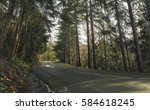 drive road pathway with trees   Shutterstock . vector #584618245