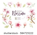watercolor boho blossom flower... | Shutterstock . vector #584725222