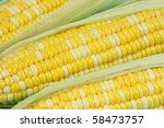 corn   Shutterstock . vector #58473757