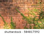 leaf wall old brick | Shutterstock . vector #584817592