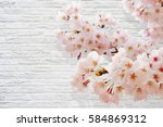 cherry blossoms white wall | Shutterstock . vector #584869312