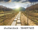 sunset in the woods corridor | Shutterstock . vector #584897605