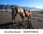 Small photo of A horse with a stableman at volcanic area