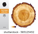 texture collection. tree rings... | Shutterstock .eps vector #585125452