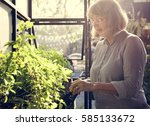 gardening nature plant flower... | Shutterstock . vector #585133672