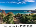 a foot path leads down to the... | Shutterstock . vector #585221282