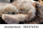 fur | Shutterstock . vector #585376532