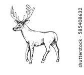 deer engraving style  vintage... | Shutterstock . vector #585408632