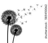 two delicate black dandelions... | Shutterstock .eps vector #585450062