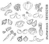 vegetables in black and white   Shutterstock .eps vector #585502508
