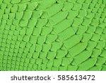 green snake scales macro...   Shutterstock . vector #585613472