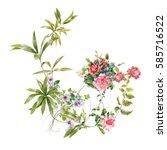 watercolor painting of flower ... | Shutterstock . vector #585716522