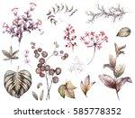 big set watercolor elements  ... | Shutterstock . vector #585778352