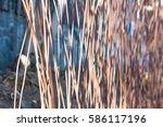 metal rods | Shutterstock . vector #586117196