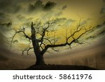 Abstract picture with bare tree and yellow background - stock photo
